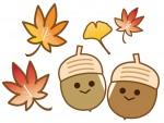 【大津市限定】<12月5日>自然に学び自然と楽しむ自然家族事業「里山の日」『ドングリをひろって遊ぼう』