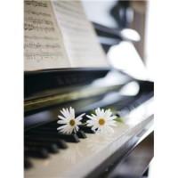 音_ピアノ[2366]