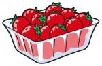 大津市高谷農園のイチゴ販売が始まりました! とれたての美味しいイチゴを味わおう♪