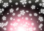 エイスクエア草津で『エイスクエア竹あかり』が開催されます。今年は3ヶ所に拡大!ハロウィンテイストのものもありますよ♪【9月23日〜10月31日】