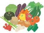 <5月23日>アウトレットパーク滋賀竜王『竜王まるしぇ』竜王町の新鮮な野菜や果物を買いに行こう♪