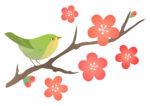 【2月13日】限定15名!能登川博物館主催「水鳥観察会」予約受付スタート!子どもと一緒に水鳥を観察しませんか。