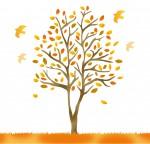 《1月17日》冬ならではの自然を感じよう!栗東市の栗東自然観察の森で「親子観察会」が開催!参加無料☆