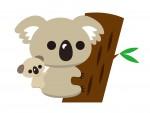 ギフトやプチギフトにも♪コアラのお菓子のパッケージをオリジナルで作れますよ!