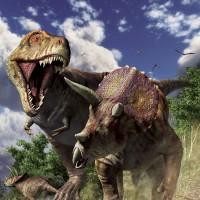 ①復元画「ティラノサウルスVSトリケラトプス」