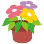 《4月11日》お買い物して素敵なミニ鉢花をもらおう♪フェリエ南草津で「春のミニ鉢花プレゼント」が開催!