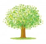 《3月21日》親子で森の不思議を体感しよう☆栗東自然観察の森で「親子観察会」が開催!参加無料♪