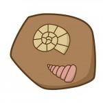 《3月20日・21日》本物の化石を発掘しよう!平和堂石山で「トレジャーハンター発掘体験」が開催!先着50名、参加無料☆