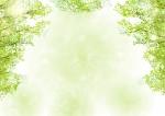<5月9日>栗東自然観察の森にて『親子観察会』新緑の森を親子で楽しもう♪【栗東市】