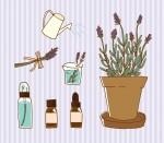【草津市】今注目の新店舗「SECOND HOUSE herb garden」にてワークショップ開催!2021年5月はアロマスプレー作りとオラクルカードリーディング♪ただいま参加者募集中!