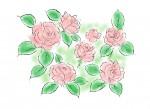 びわ湖大津館のイングリッシュガーデンでガーデンツアーが開催されます。ガーデンツアーは無料です♪