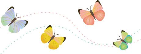 蝶 ちょう 春 虫
