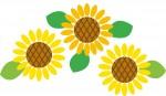 【5月16日】植木鉢にデコパージュして、ひまわりの種をまこう☆草津市立水生植物公園みずの森☆