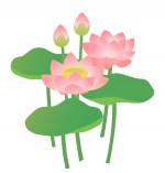 《6月20日》草津市の水生植物公園みずの森で「みなづきフェスタ」が開催!クイズラリーやワークショップを楽しもう!草津市民入園無料☆