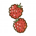 <6/14~30>幻の果実「アドベリー」摘みたて生果実を食べられるのは今だけ!道の駅藤樹の里あどがわ「アドベリーフェア」開催☆