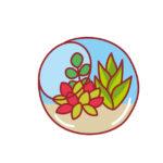 《7月17日・18日》夏休みの自由研究や工作にもピッタリ☆イオンモール草津で「手作りキャンドル」&「コケテラリウム作り」が開催!