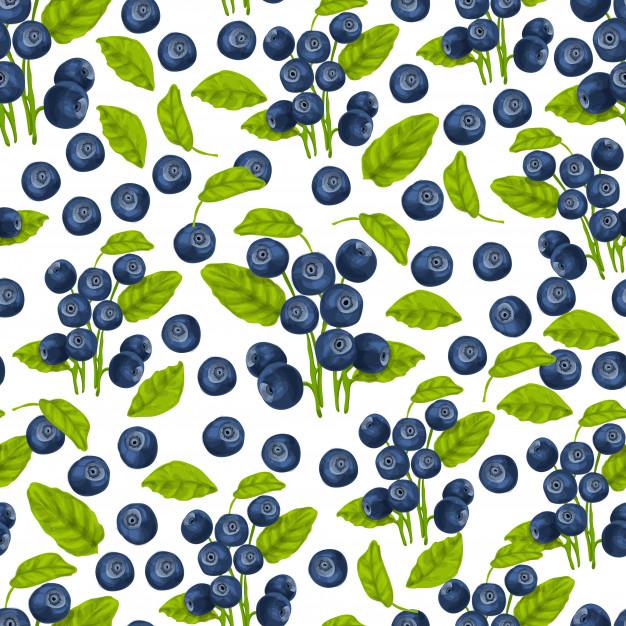 blueberry-seamless-pattern_98292-3705