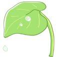 象鼻杯が体験できる‼お水なら無料、お酒なら100円♪【7/17・18】参加無料のハスの葉ワークショップやイベント色々♪【水生植物公園みずの森】