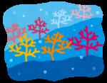楽しく作ろう♪「手作りマリンドーム」のワークショップがイオンモール草津にて開催!夏休みの思い出にもいかが☆【8月7日〜9日】