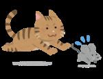 イオンモール草津に、あの有名なネコとネズミのキャラクターのポップアップショップがオープン♪ノベルティも☆【8月20日〜】